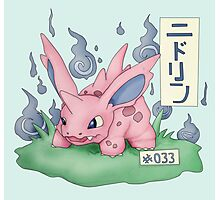Nidorino Japanese Pokemon Photographic Print