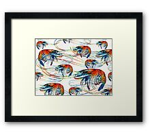 Bright Colorful Shrimp Collage Art by Sharon Cummings Framed Print