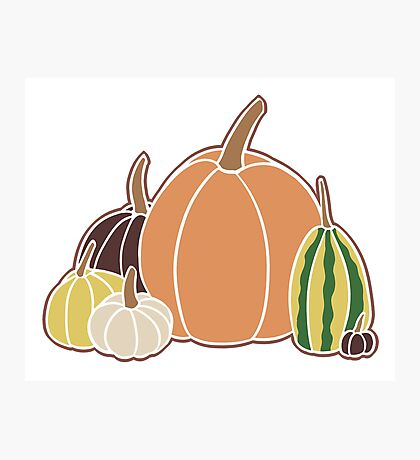 Pumpkins and Gourds Photographic Print