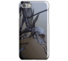 First dead bird skull burning with a black flame feather iPhone Case/Skin