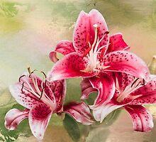 Stargazer Lilies by Diane Schuster