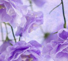 Campanella Blossoms Suspended - Macro Sticker