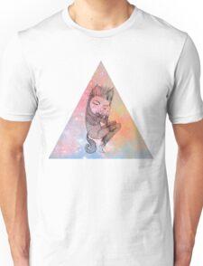 Catskin Nebula Triangle T-Shirt