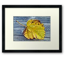 Hint of the coming Fall Framed Print
