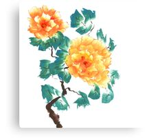 Peonies, painted in gouache. Canvas Print