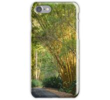 track in the park iPhone Case/Skin