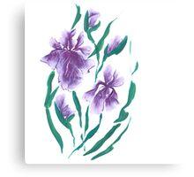 Irises, painted in gouache. Canvas Print