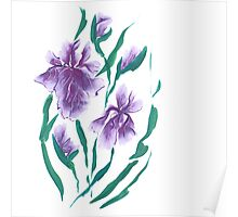 Irises, painted in gouache. Poster