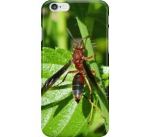 Red Wasp iPhone Case/Skin