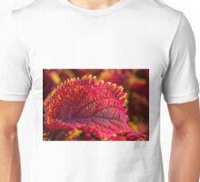 Cool Coli Unisex T-Shirt