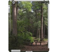 September Stillness iPad Case/Skin