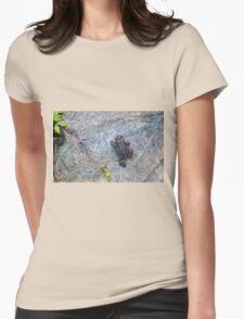 Little Rock Climber Womens Fitted T-Shirt