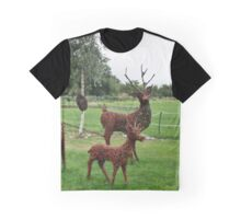 Adornments Graphic T-Shirt