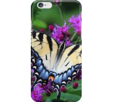 Tiger Swallowtail - Hueston Woods Ohio iPhone Case/Skin