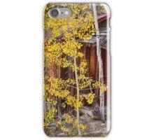 Mountain Hideaway iPhone Case/Skin
