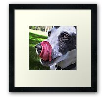 Oh Man! That Was Good! Framed Print