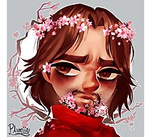 McCree - cherry blossoms Photographic Print