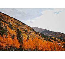 Fall in the Rockies Photographic Print