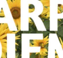 Sunflower Carpe Diem Sticker