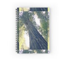 Magnificence Spiral Notebook