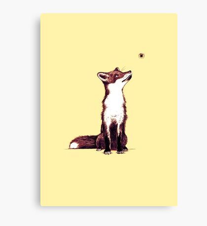 Brown fox looks at thing Canvas Print