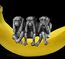 ❤‿❤ MONKEYS SIGN LANGUAGE SITTING ON BANANA❤‿❤ by ✿✿ Bonita ✿✿ ђєℓℓσ