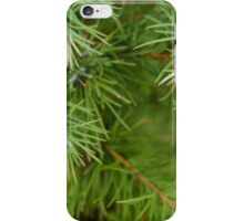 Larch Needles iPhone Case/Skin