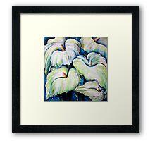 Arum Lilies Framed Print