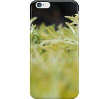 Fall Foliage iPhone Case/Skin