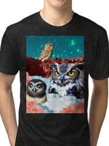 Kindly Owl Gods of the Red Mesa Tri-blend T-Shirt