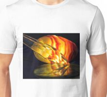 Fire in the Stones Unisex T-Shirt