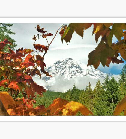 Mt Rainier - From Longmire  Sticker