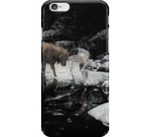 The Glorious Pair iPhone Case/Skin