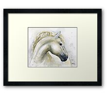 Horse Watercolor Painting Framed Print