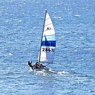 Sailing on Coffin Bay by Ian Berry