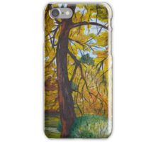 Old Country Barn iPhone Case/Skin