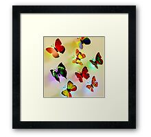 butterfly color Framed Print