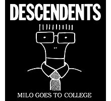 Milo Goes to College Photographic Print