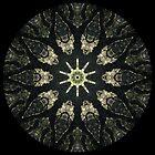 Moss Tree Kaleidoscope by fantasytripp
