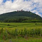 Haut-Koenigsbourg Castle and Surrounding Vineyards by Yair Karelic