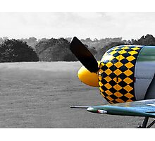 Joyflight Photographic Print