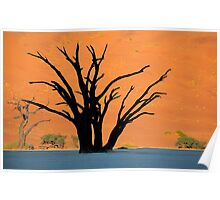 Camel Thorn Trees Poster