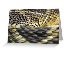 Eastern Diamondback Rattlesnake Scales Greeting Card