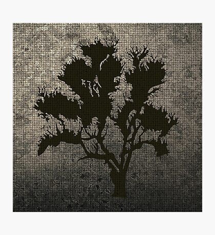 Foliage Abstract Photographic Print
