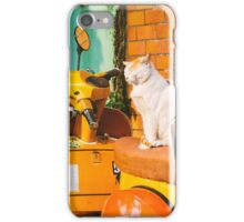 Cat on Bike iPhone Case/Skin