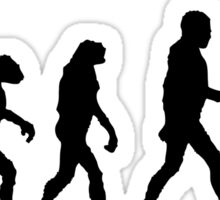 Evolution of Baseball Sticker
