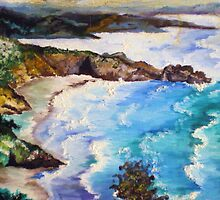 CALIFORNIA COASTLINE by Tammera