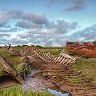 Wreckage ! by Irene  Burdell