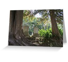 Cosy Between Two Trees Greeting Card