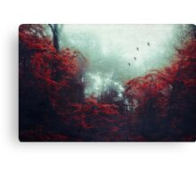 Barrier - enchanted Forest Canvas Print